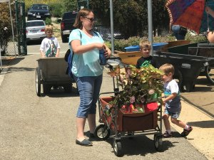 Shannon Green and her boys are regular customers at the biannual Plant Sale at Saddleback College. (Marie Christner)
