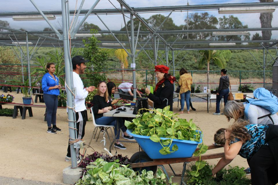 Students involved with the Ceramics and Horticulture Department advise plant sale visitors (Joseph Fleming/Lariat)