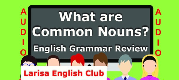 What are Common Nouns Audio