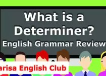 What is a Determiner_PDF