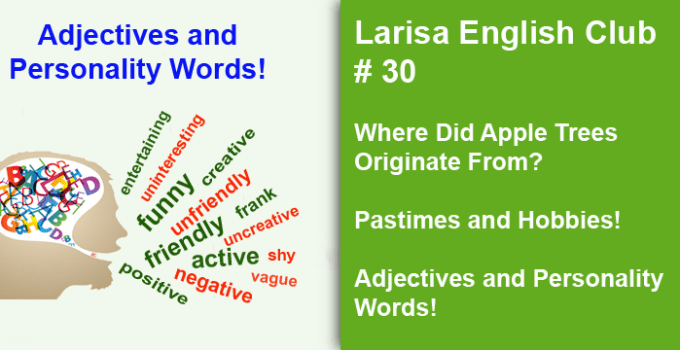 Adjectives and Personality Words