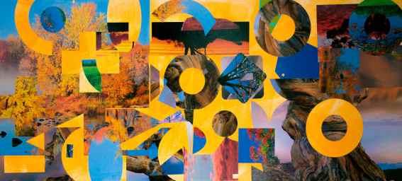 Autumn Has Arrived - Image accompanies My Artist's Statement