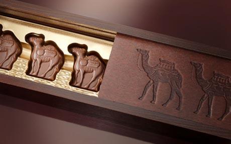 cioccolato al latte di cammello