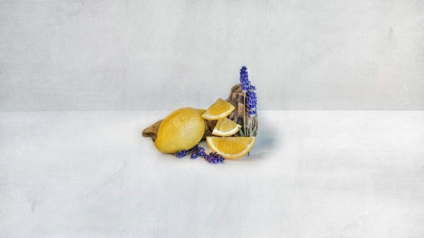 slices of lemon with driftwood and lavender sprigs