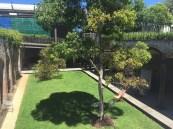 lawn platform
