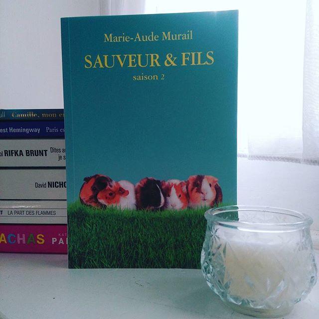Sauveur et Fils (T2) - Marie-Aude Murail