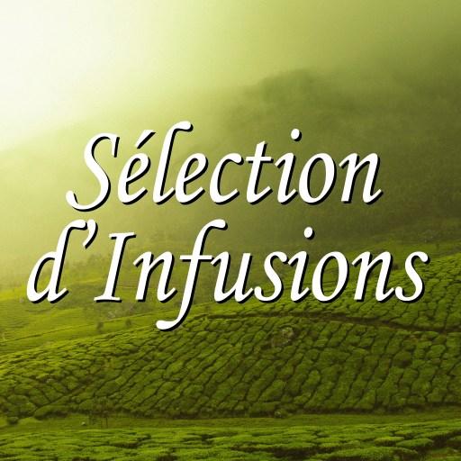 Sélection d'Infusions