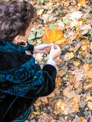 10 plaisirs d automne d une fille d ete