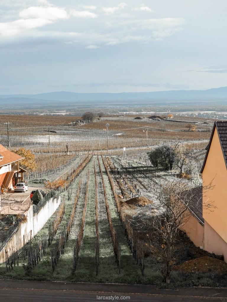 Escapade de 2 jours sur la route des Vins d'Alsace