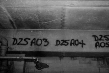 DSC_2404