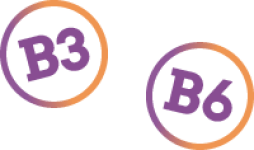 Vitamin B3 and Vitamin B6