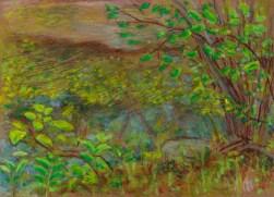 Larry Johnson artist, landscape drawing, neponset river, oil pastel, colored pencil