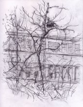 sketchbook drawing factory adjust