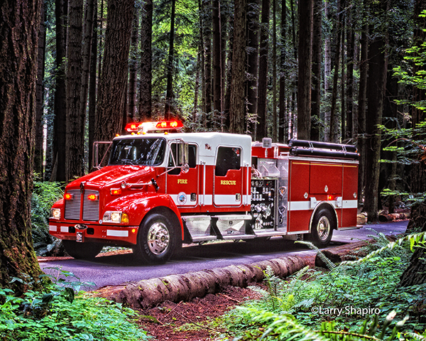 Kenworth fire engine in a forest
