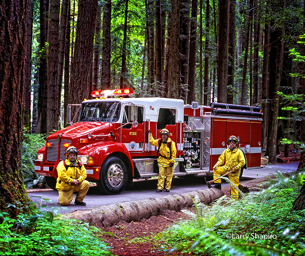 firemen in a forest with Kenworth fire engine