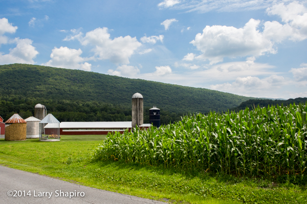 farm at the  base of rolling Pennsylvania hills