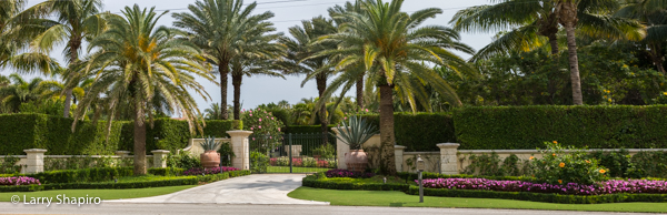 Sculpted and manicured bushes and ornate landscaping in Palm Beach FL