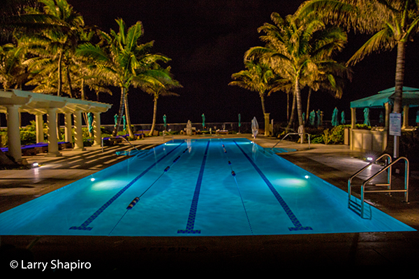 Tropic resort pool with palm trees at night