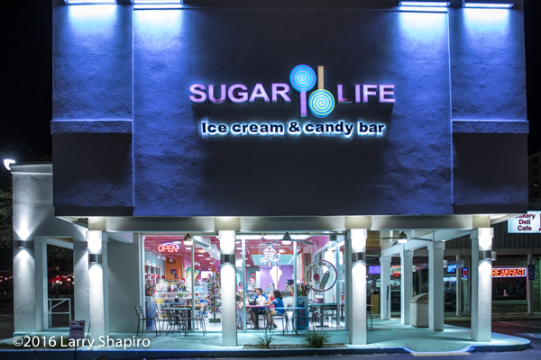 The Sugar Life Candy Store