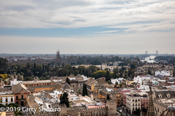 skyline of Seville Spain from the bell tower of the Great Cathedral