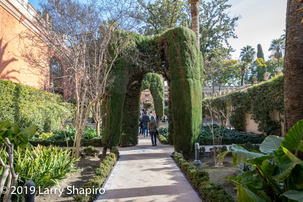 gardens at the Alcazar Palace in Seville