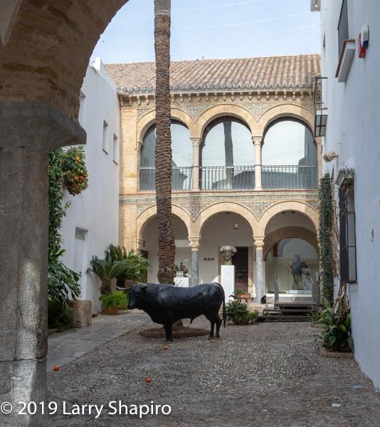 beautiful Cordoba courtyard with bull