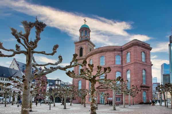 manicured trees in Frankfurt