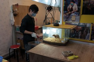 Street Food, Chicken, Kitchen, Breathing Protection, Street Photography, Asia, Taiwan, China, Photo Book, Lars Hübner, Fotograf, Nothing to Declare,