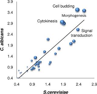 Beltrao et al., PLoS Biology, 2009, Figure 1a