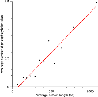 Number of phosphorylation sites vs. protein lengh for S. cerevisiae