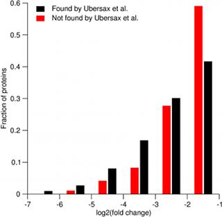 Phosphorylation ratios from Holt et al.