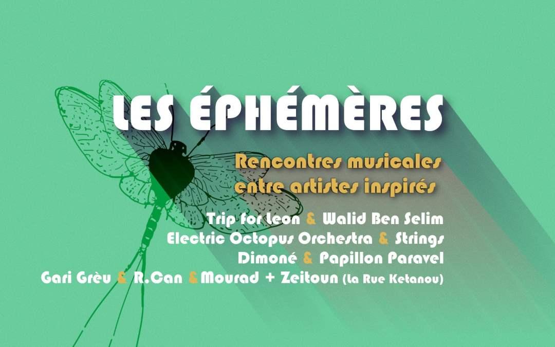 «Les Éphémères» : des rencontres musicales virtuelles proposées par El Mediator