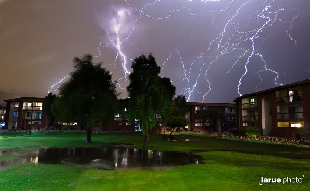Lightning Bolts Illuminate the Sky Over a Park with Two Trees