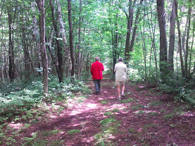 bush road with 2 men