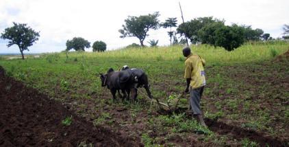 uganda-july-2008-195