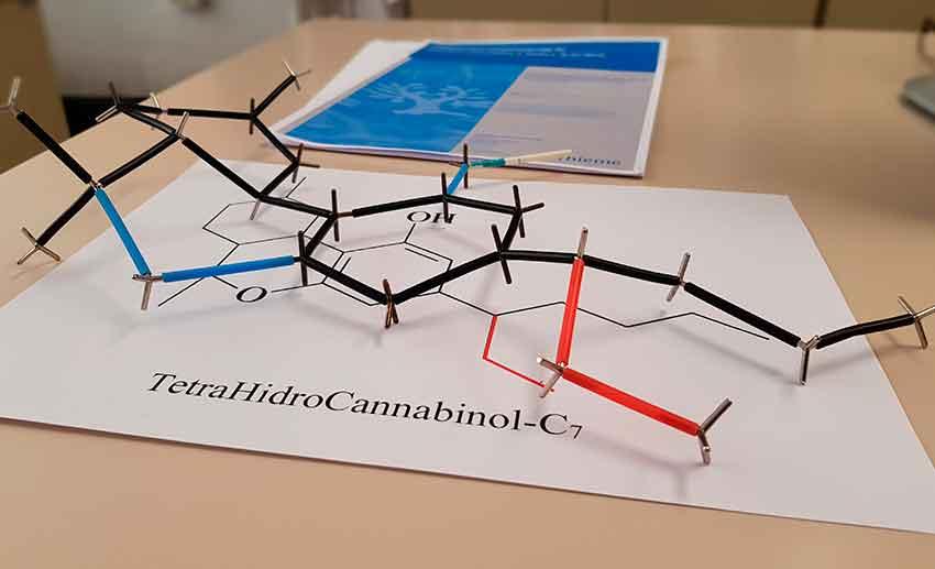 Un equipo de la UPC identifica 16 nuevos cannabinoides
