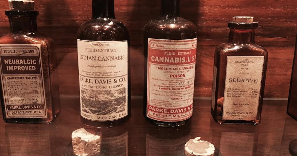 Día Internacional del Cannabis Medicinal