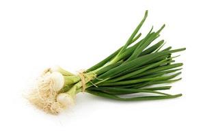 saison du petit oignon blanc