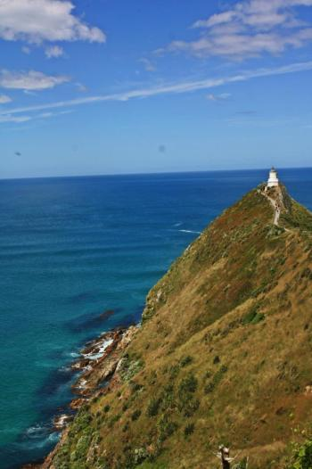 IMG_0021_rec_nugget_point_web