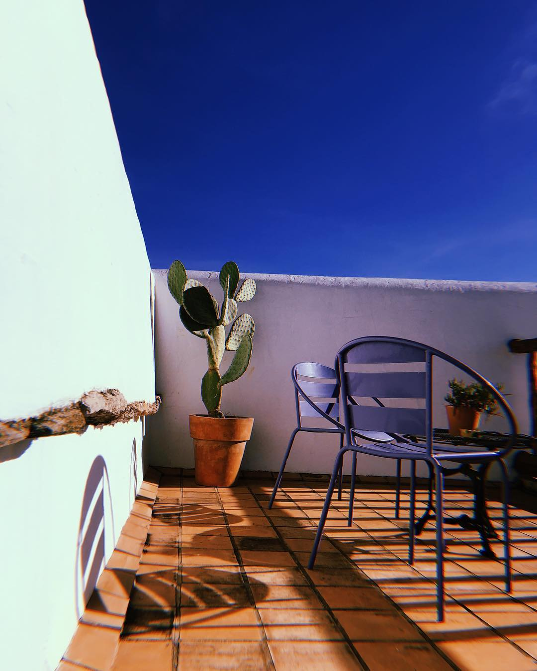 // It doesn't really feel like Xmas // #december #sun #deep #blue #sky #winterweather #ibizastyle #itsbetterinibiza #lascicadasibiza #welove #winterseason #islandlife #ibiza #vintagechairs #cactus