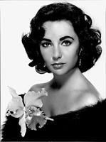 mi morena foto de Elizabeth Taylor de Hollywood dorado