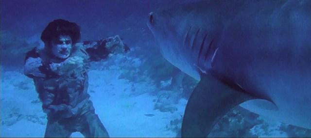Nueva York bajo el terror de los zombies, el tiburón.