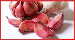 Los beneficios de Comer Dientes de Ajos Crudo