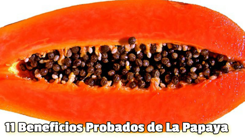 11 Beneficios Probados de La Papaya 2