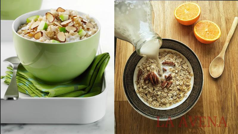Comer Avena Puede Ayudar a Perder Peso Rápidamente