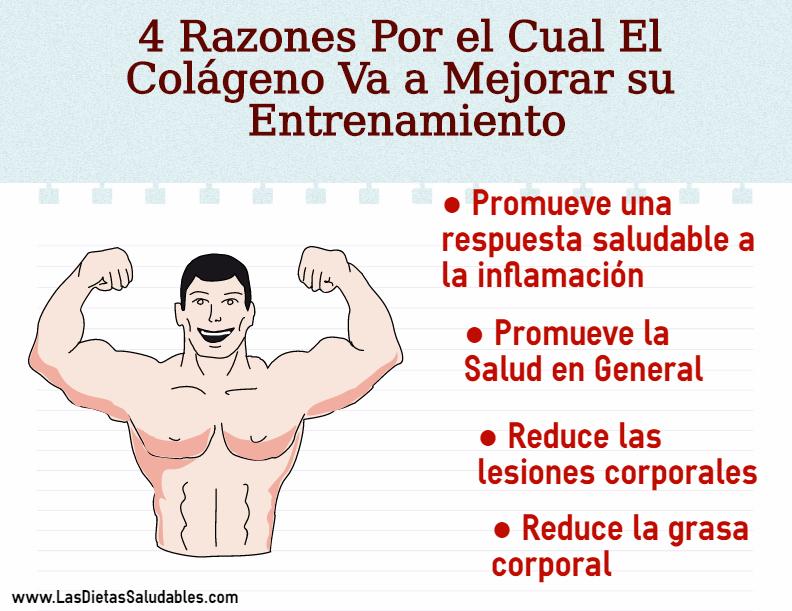 4 Razones Por el Cual El Colágeno Va a Mejorar su Entrenamiento