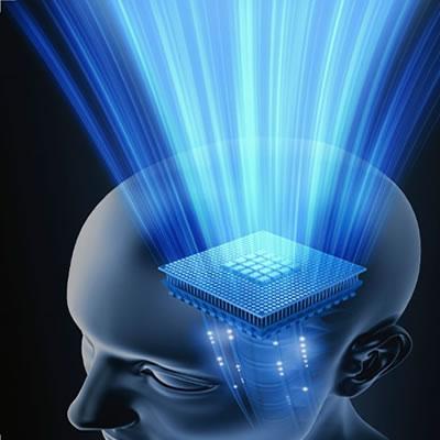 funcion cognitiva