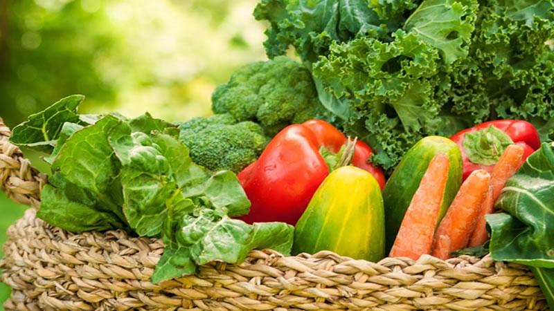 Alimentos Alcalinos Para El Cáncer