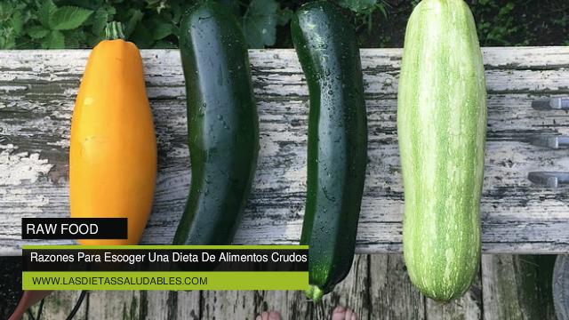 Razones Para Escoger Una Dieta De Alimentos Crudos