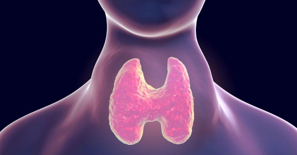 desequilibrio de la hormona tiroidea